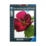 Пазл с глянцевым эффектом Цветок гибискуса, 1000 деталей