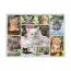 Пазл Галерея котят, 500 деталей