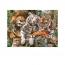 Пазл Сон больших кошек XXL, 200 деталей
