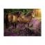 Пазл Лошади в цветах, 500 деталей